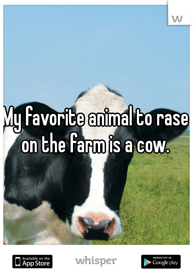 My favorite animal to rase on the farm is a cow.