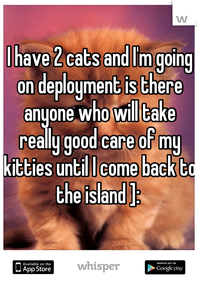 I have 2 cats and I'm going on deployment is there anyone who will take really good care of my kitties until I come back to the island ]: