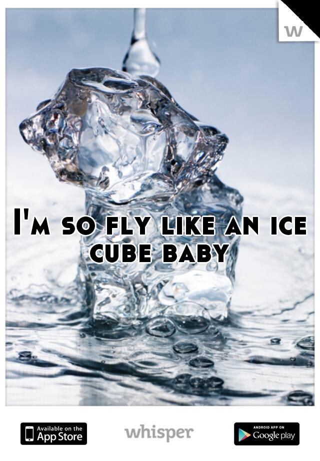 I'm so fly like an ice cube baby