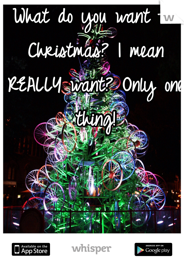 What do you want for Christmas? I mean REALLY want? Only one thing!