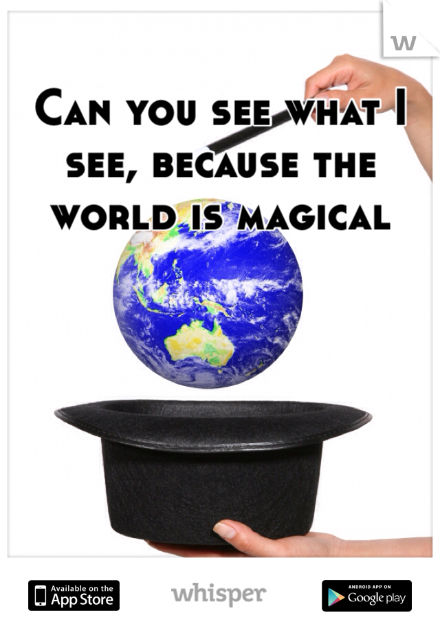 Can you see what I see, because the world is magical