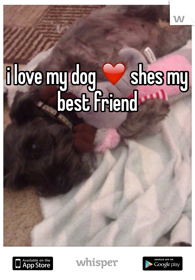 i love my dog ❤️ shes my best friend