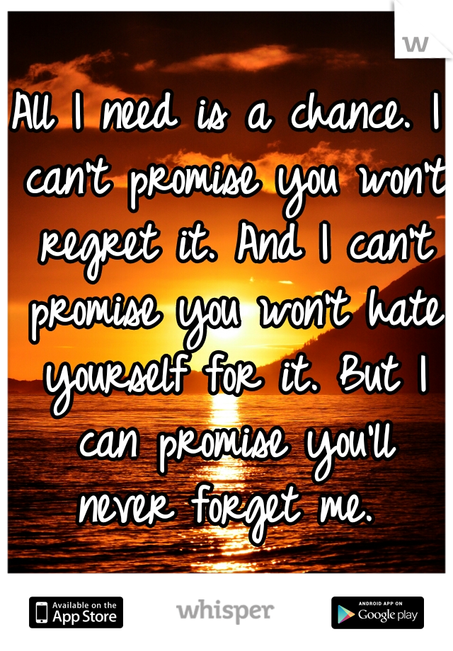 All I need is a chance. I can't promise you won't regret it. And I can't promise you won't hate yourself for it. But I can promise you'll never forget me.