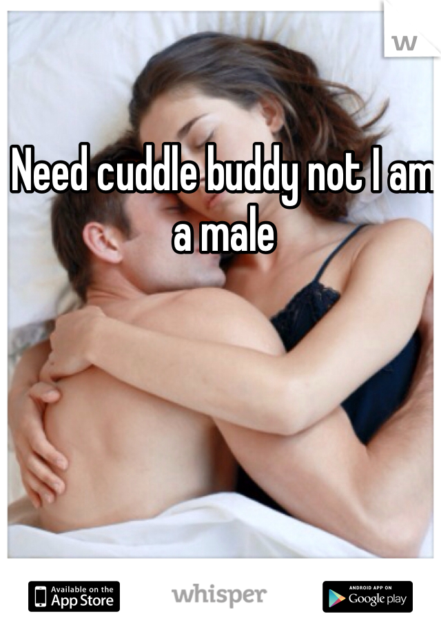 Need cuddle buddy not I am a male