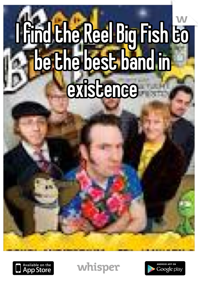 I find the Reel Big Fish to be the best band in existence
