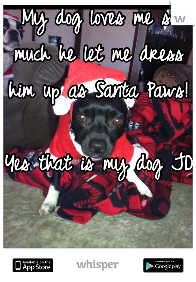 My dog loves me so much he let me dress him up as Santa Paws!   Yes that is my dog JD