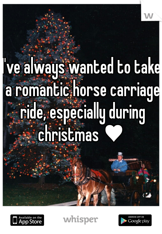 I've always wanted to take a romantic horse carriage ride, especially during christmas ♥