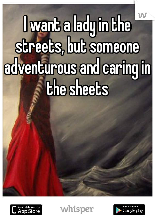 I want a lady in the streets, but someone adventurous and caring in the sheets