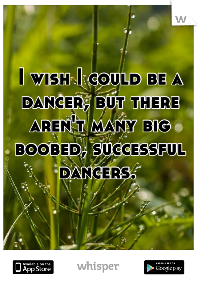 I wish I could be a dancer, but there aren't many big boobed, successful dancers.