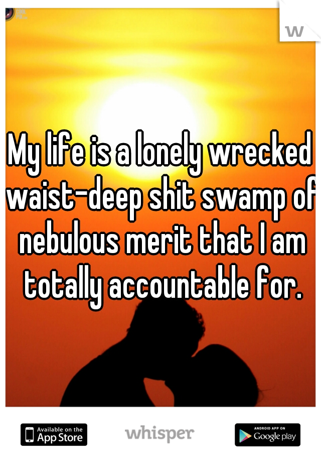 My life is a lonely wrecked waist-deep shit swamp of nebulous merit that I am totally accountable for.