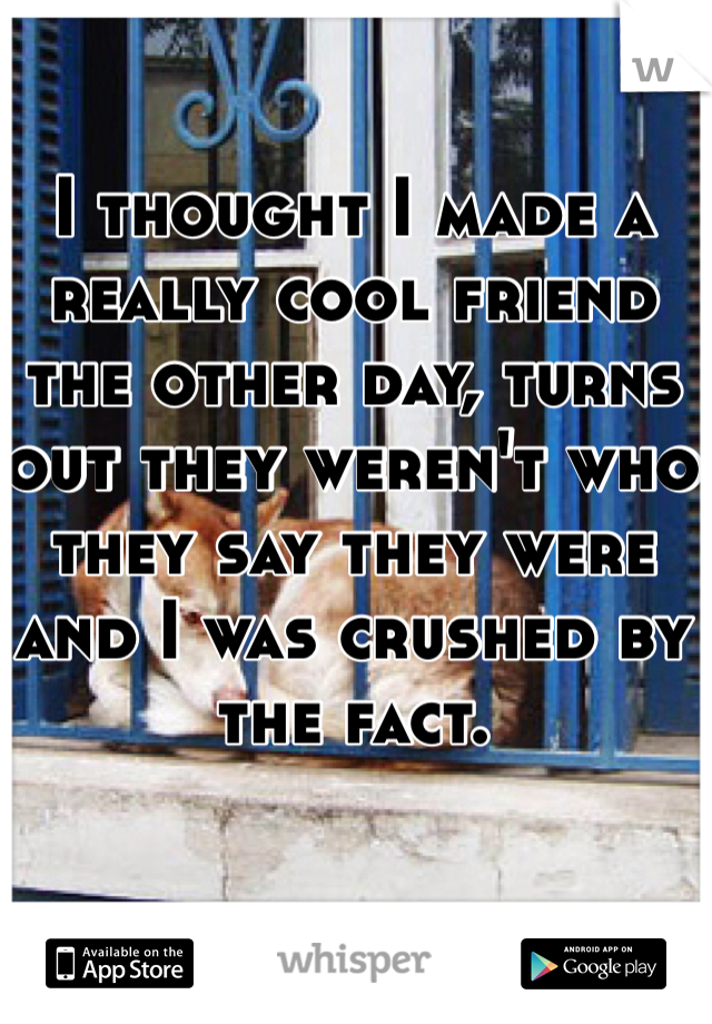 I thought I made a really cool friend the other day, turns out they weren't who they say they were and I was crushed by the fact.