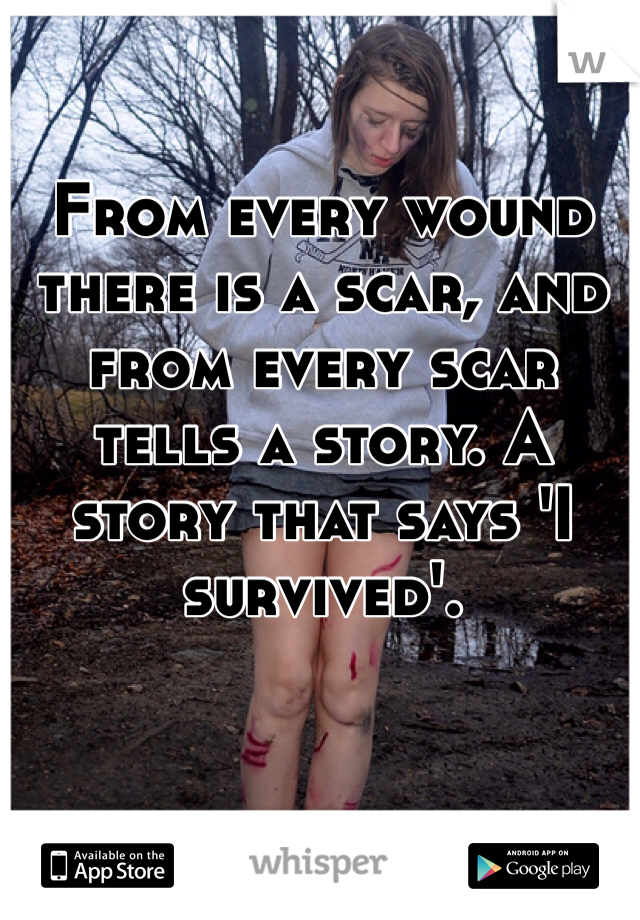 From every wound there is a scar, and from every scar tells a story. A story that says 'I survived'.