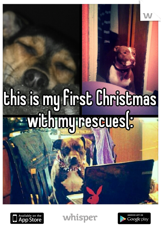 this is my first Christmas with my rescues(: