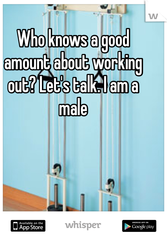 Who knows a good amount about working out? Let's talk. I am a male