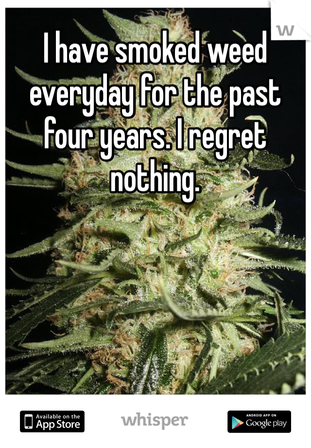 I have smoked weed everyday for the past four years. I regret nothing.