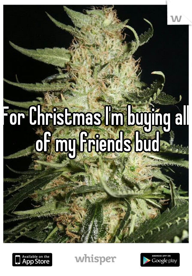 For Christmas I'm buying all of my friends bud