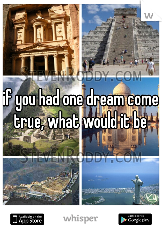 if you had one dream come true, what would it be