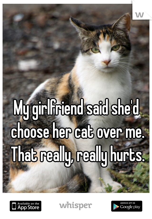 My girlfriend said she'd choose her cat over me. That really, really hurts.