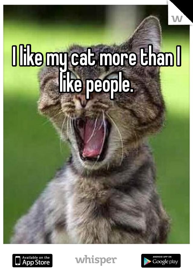 I like my cat more than I like people.