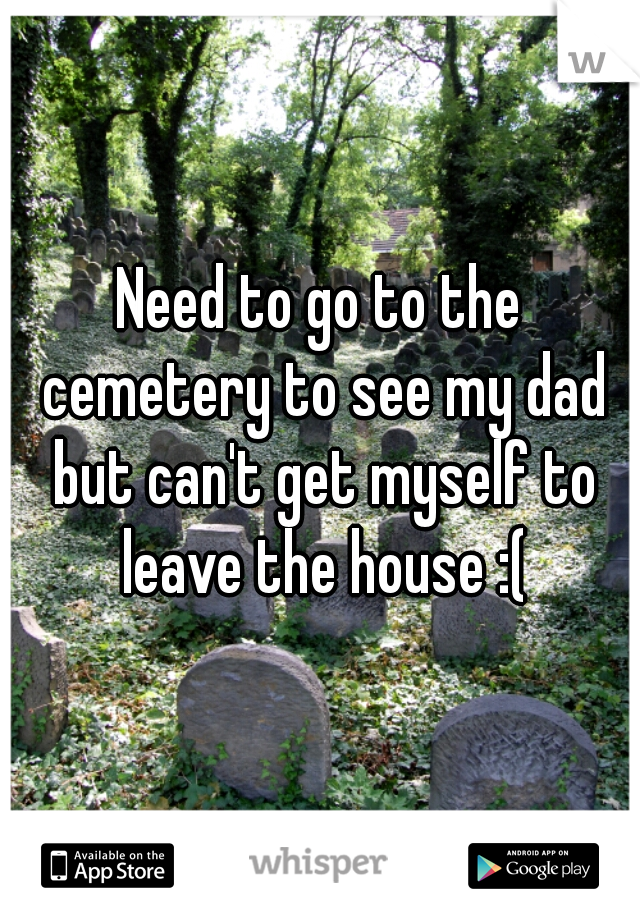 Need to go to the cemetery to see my dad but can't get myself to leave the house :(