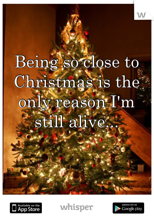 Being so close to Christmas is the only reason I'm still alive...