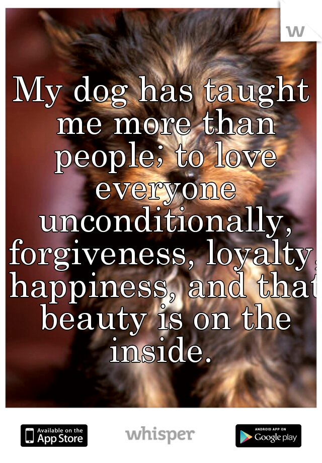 My dog has taught me more than people; to love everyone unconditionally, forgiveness, loyalty, happiness, and that beauty is on the inside.