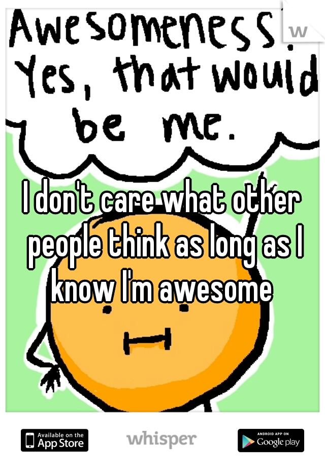 I don't care what other people think as long as I know I'm awesome