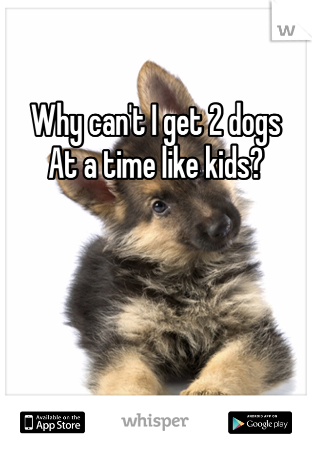 Why can't I get 2 dogs  At a time like kids?