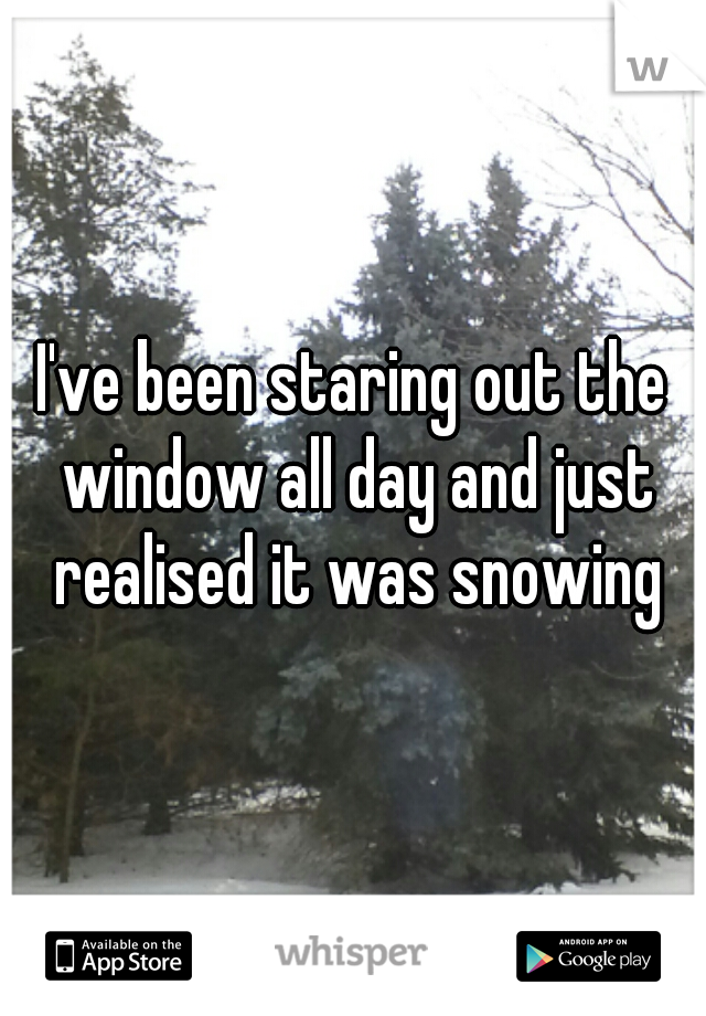 I've been staring out the window all day and just realised it was snowing