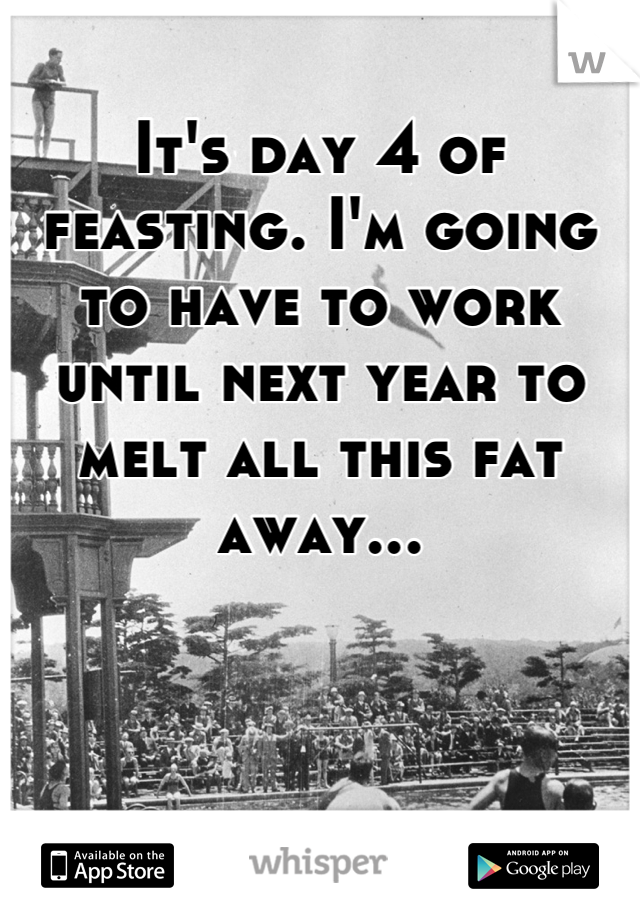 It's day 4 of feasting. I'm going to have to work until next year to melt all this fat away...
