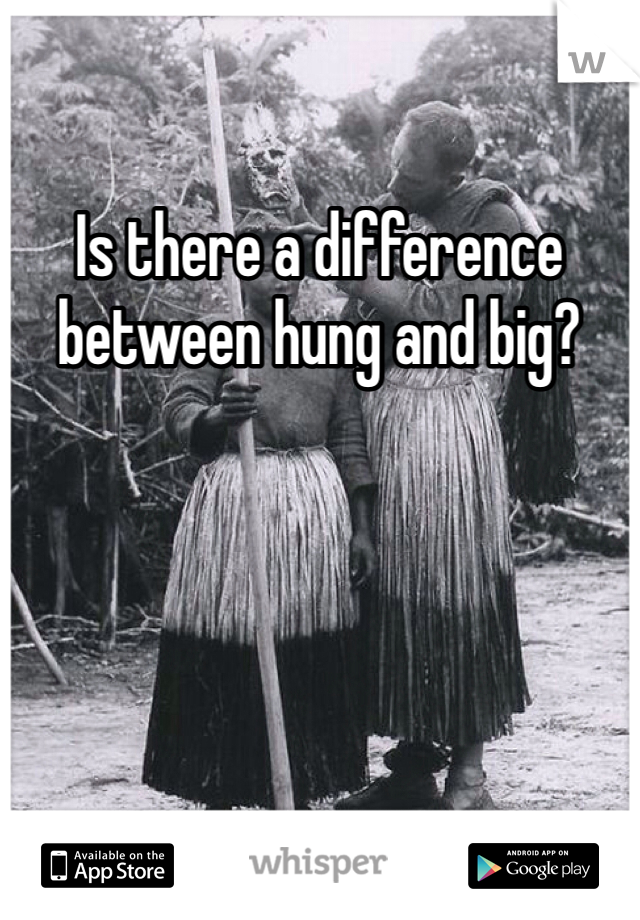 Is there a difference between hung and big?