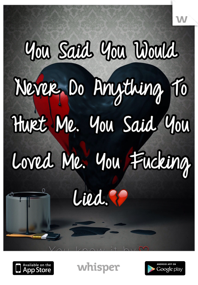 You Said You Would Never Do Anything To Hurt Me. You Said You Loved Me. You Fucking Lied.💔