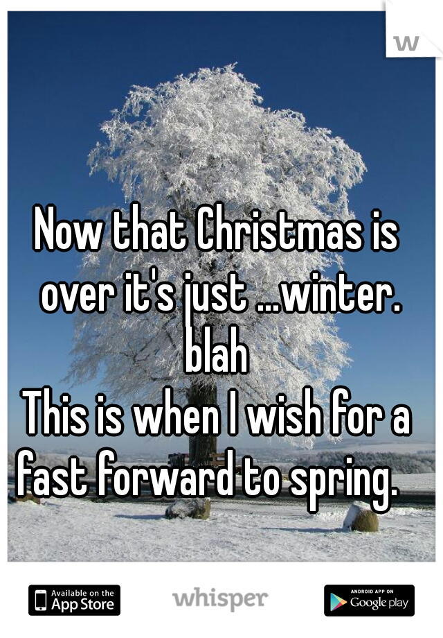 Now that Christmas is over it's just ...winter. blah  This is when I wish for a fast forward to spring.