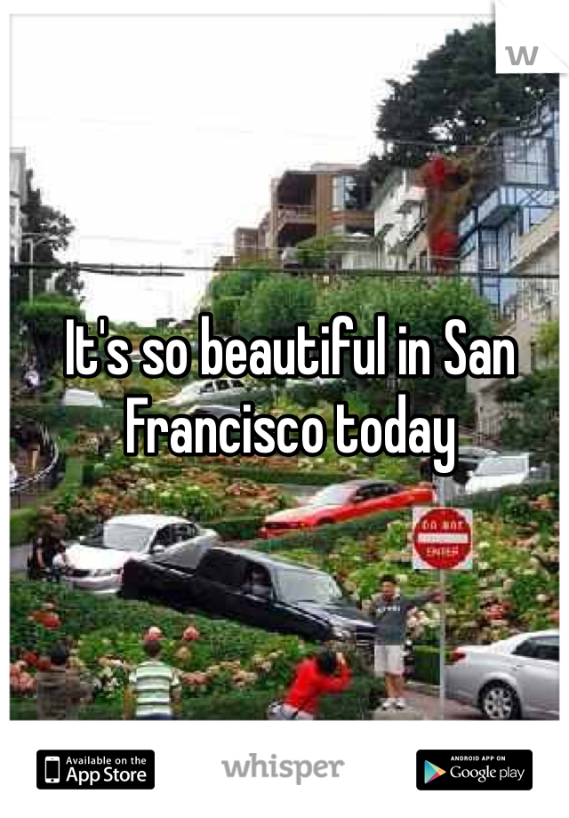 It's so beautiful in San Francisco today