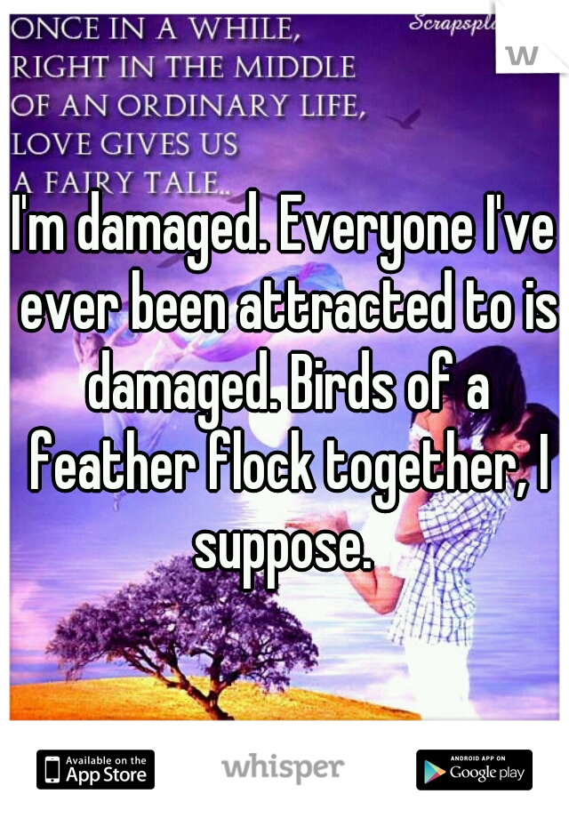 I'm damaged. Everyone I've ever been attracted to is damaged. Birds of a feather flock together, I suppose.