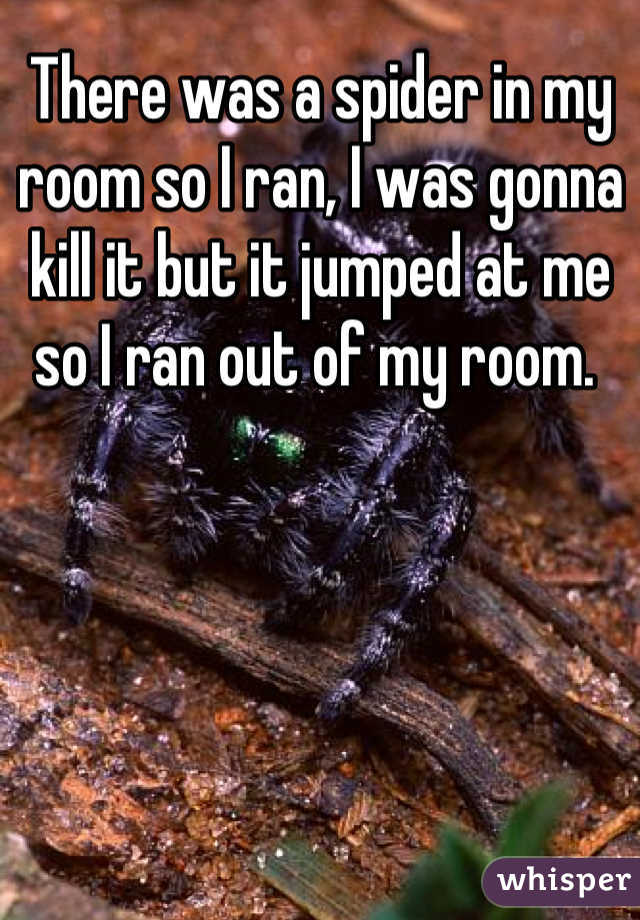 There was a spider in my room so I ran, I was gonna kill it but it jumped at me so I ran out of my room.