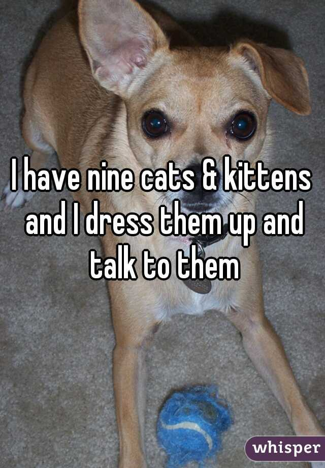 I have nine cats & kittens and I dress them up and talk to them