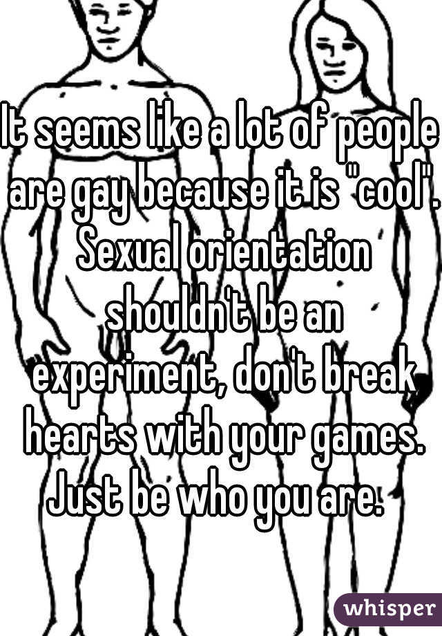 """It seems like a lot of people are gay because it is """"cool"""". Sexual orientation shouldn't be an experiment, don't break hearts with your games. Just be who you are."""
