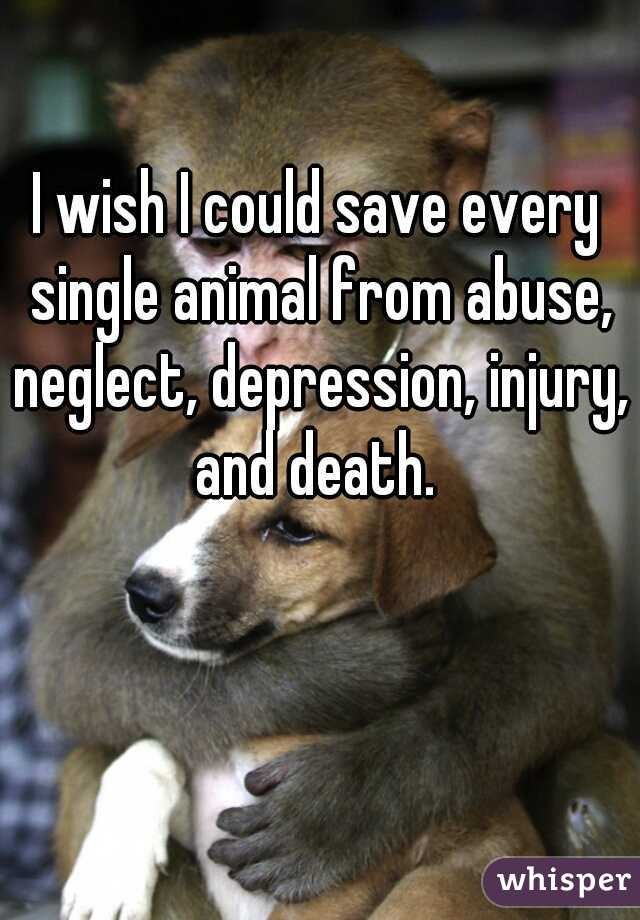I wish I could save every single animal from abuse, neglect, depression, injury, and death.