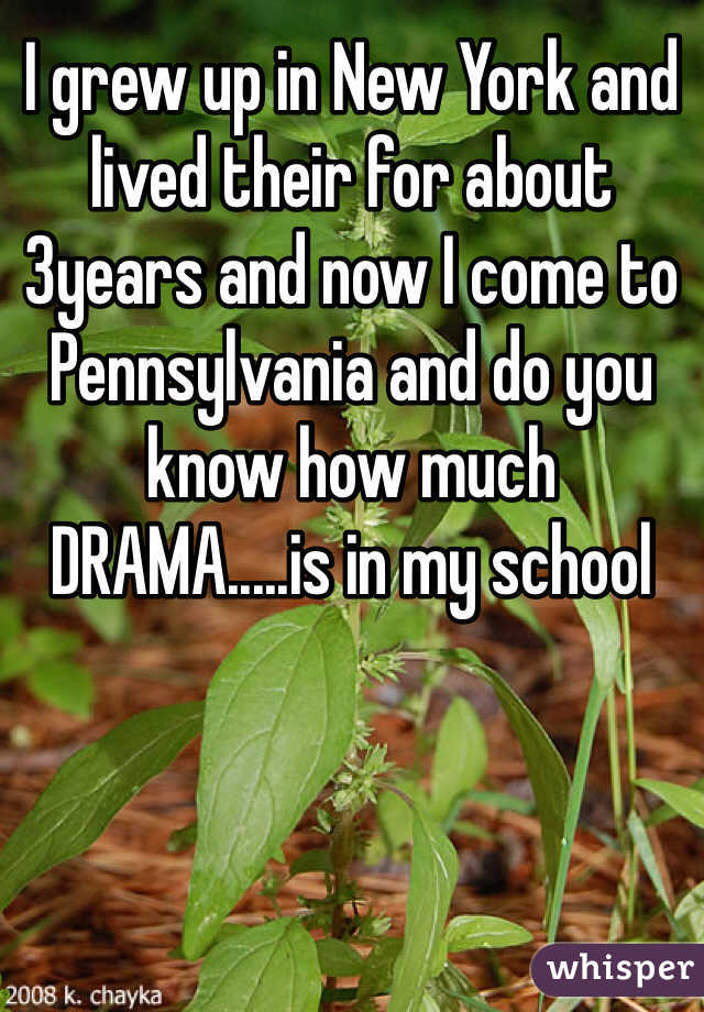 I grew up in New York and lived their for about 3years and now I come to Pennsylvania and do you know how much DRAMA.....is in my school