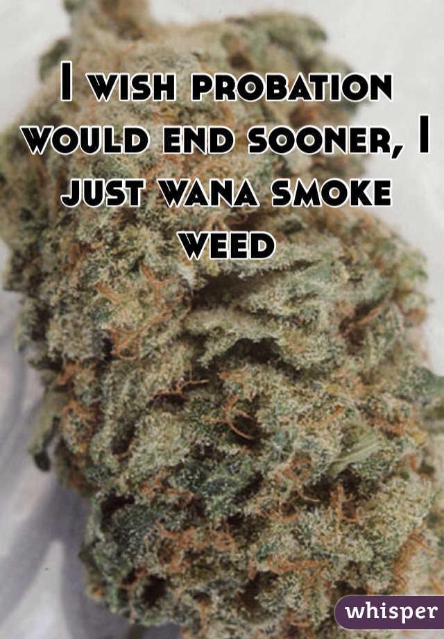 I wish probation would end sooner, I just wana smoke weed