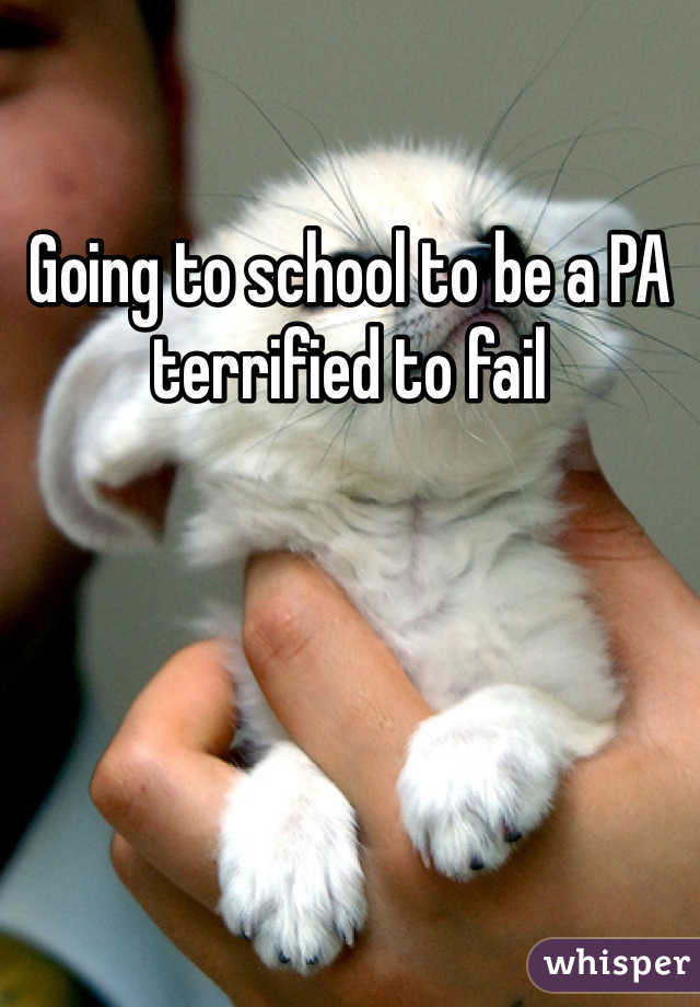 Going to school to be a PA terrified to fail