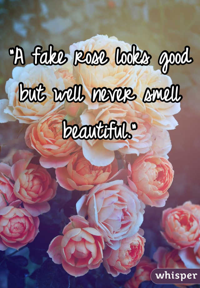 """A fake rose looks good but well never smell beautiful."""
