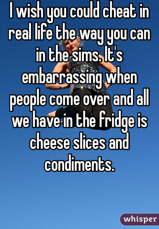 I wish you could cheat in real life the way you can in the sims. It's embarrassing when people come over and all we have in the fridge is cheese slices and condiments.