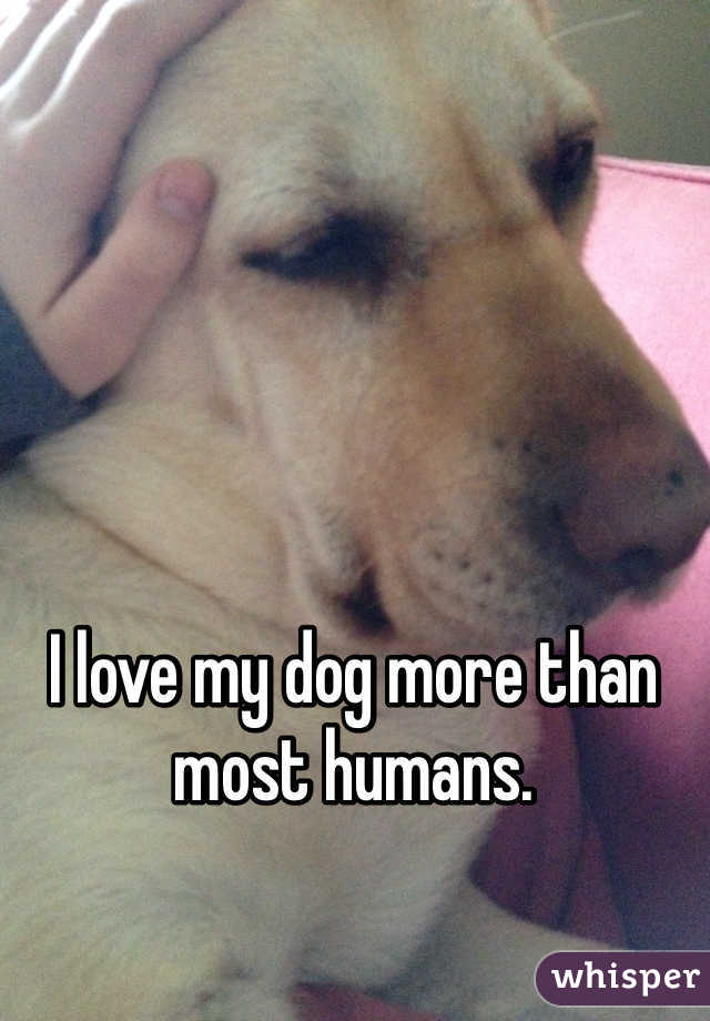 I love my dog more than most humans.