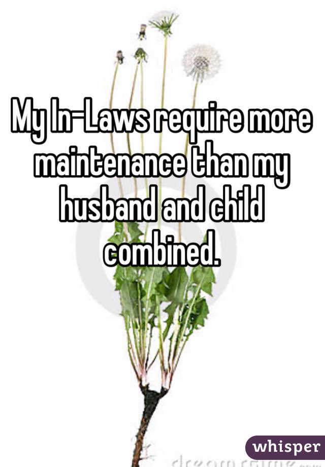 My In-Laws require more maintenance than my husband and child combined.