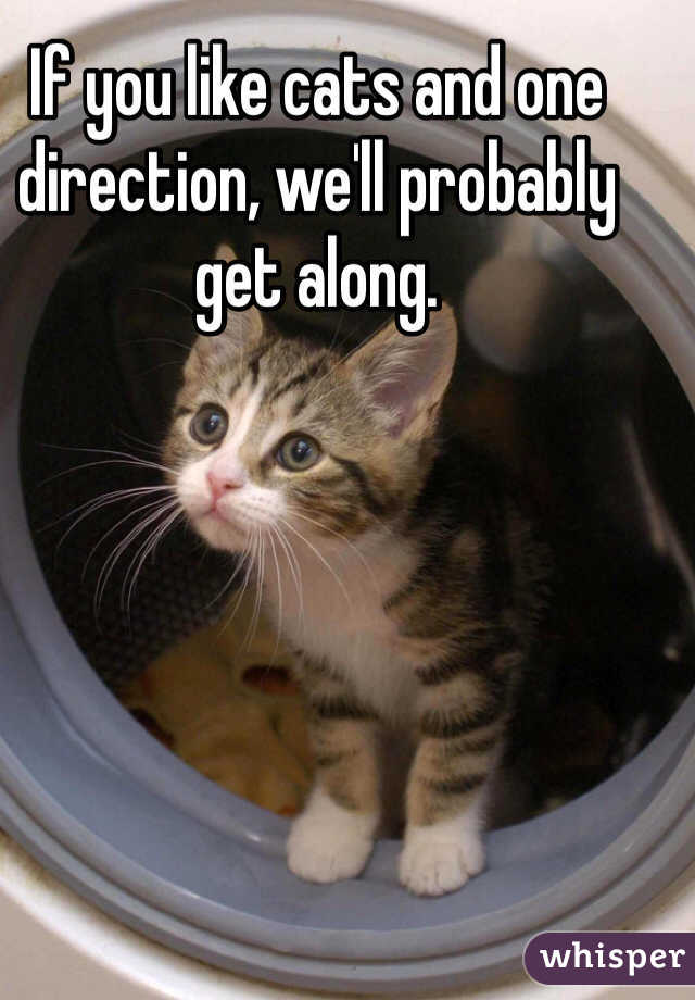If you like cats and one direction, we'll probably get along.