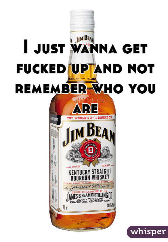 I just wanna get fucked up and not remember who you are