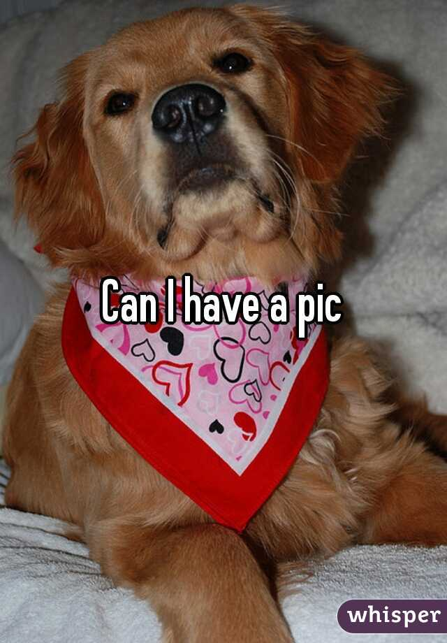 Can I have a pic
