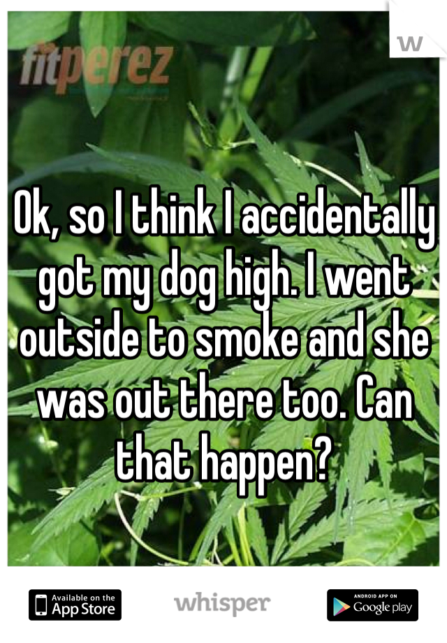 Ok, so I think I accidentally got my dog high. I went outside to smoke and she was out there too. Can that happen?